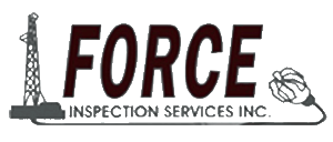 force_inspection_logo